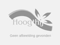 Tentoonstelling '200 jaar Het Heideveld' door Historische Vereniging Tuk